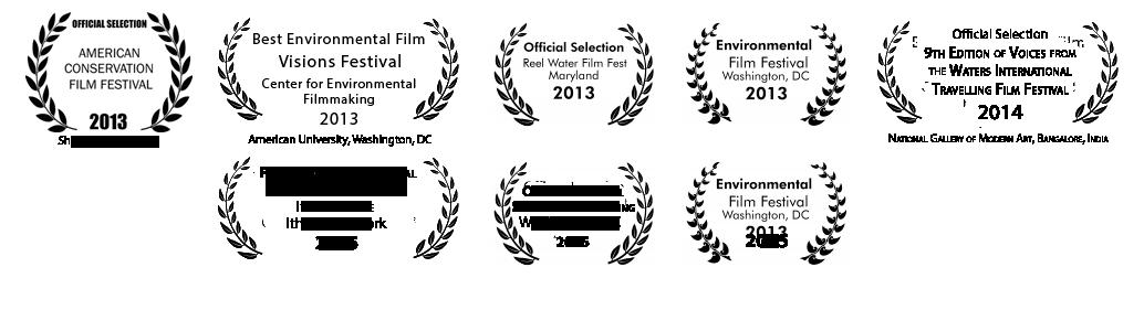 award--laurel